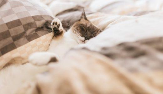 2人暮らしには布団がおすすめ!ベッドには無い4つのメリット