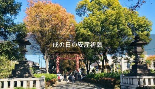 【埼玉】戌の日の安産祈願に大宮氷川神社へ行ってきた!初穂料や祈祷の様子は