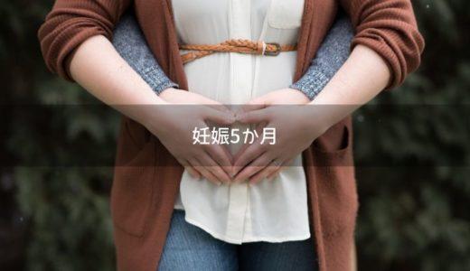 【妊娠5か月】体重増加はどれ位OK?安産祈願など16週~19週の過ごし方